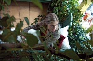 Ogrody zimowe - Rozmarzony ogród? zimowy